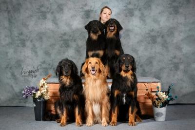 4 поколения ховавартов Hof Garc gartsberg