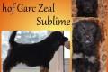 Hof Garc Zeal Sublime