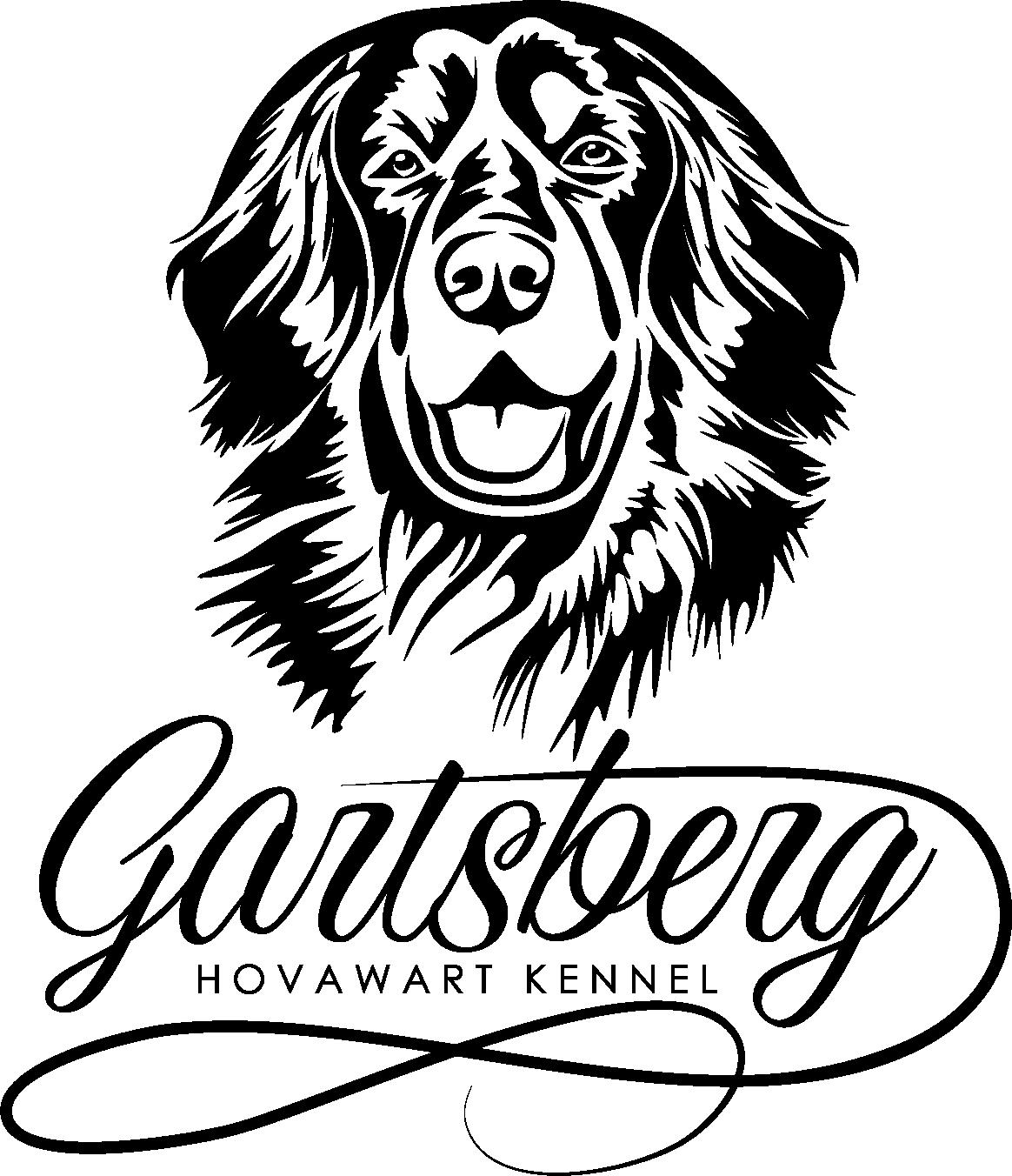 Импортные кобели питомника/ Import males kennel
